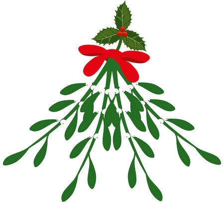 XMas Mistletoe and holly Illustration