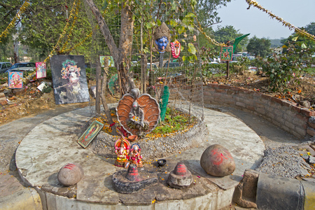 Little shrine of Lord Shiva  at the root of tree in Delhi. On this shrine are installed Shiva-Lingam, deities of Shri Shirdi Saii Baba, Ganesha, Durga, Kali photo