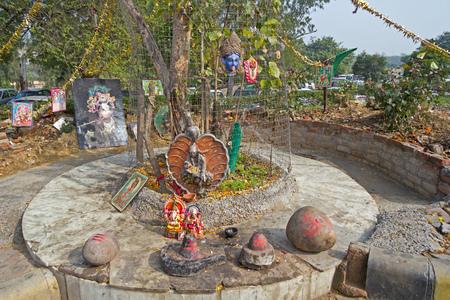 Little shrine of Lord Shiva  at the root of tree in Delhi. On this shrine are installed Shiva-Lingam, deities of Shri Shirdi Saii Baba, Ganesha, Durga, Kali photo