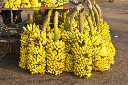 puri: Indian bananas for sale on the street