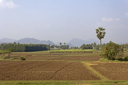 andhra: Rural landscape of South-Indian state Andhra Pradesh