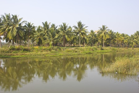 karnataka: Little branch of South-Indian river Kaveri in Karnataka
