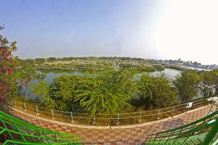 bird sanctuary: JANUARY 28, 2015, UPPALAPADU, ANDHRA PRADESH, INDIA - Uppalapadu bird sanctuary, fish-eye lens Stock Photo
