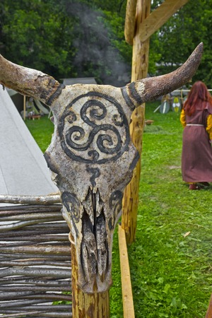 triskele: JUNE 6, 2015,  MOSCOW, RUSSIA -  Festival of the historic reconstruction Times and Ages in the park Kolomenskoye. Scull of the bull with the protective celtic ornament