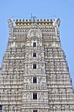 Detail of gopuram of the ancient and famous Govindaraj Swami temple in Tirupati, Andhra Pradesh, South India. This temple dedicated to Shri Krishna