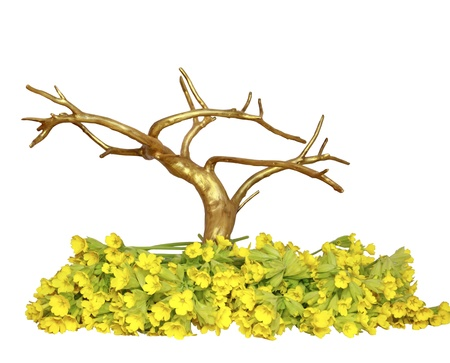A gold tree in yellow wild flowers on a white background