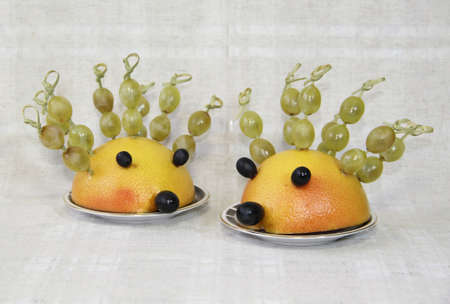 ridicolo: Ridicoli ricci da frutta Archivio Fotografico