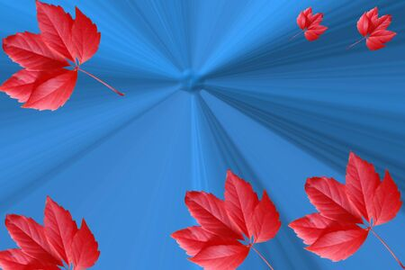 The abstract stylish dark blue background with red leaves