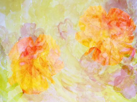 Colorful flower background made with color filters, watercolor composition  photo