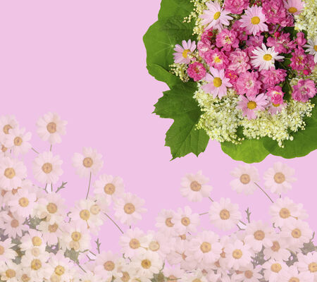 Scenic pink floral background with roses, daisies and green leaves photo
