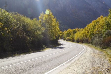 Empty curved asphalt road, trees with yellowed leaves blue sky and sun. Stock Photo