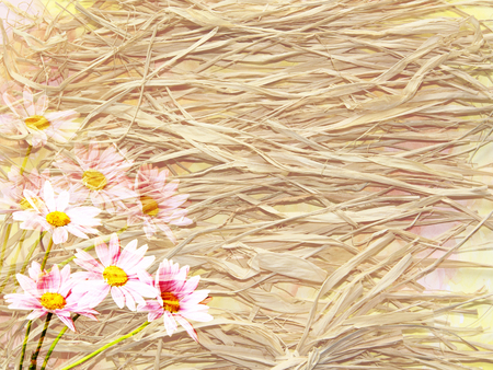 dry grass: The picturesque background in rustic style with dry grass and a bouquet of daisies