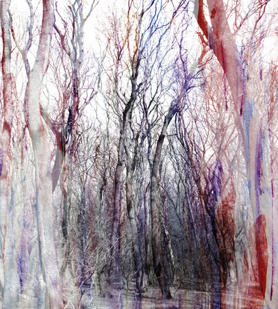 double exposure: Abstract watercolor background with fantastic trees, double exposure effect Stock Photo