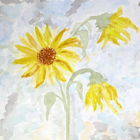 Watercolor painting of flowers sunflower, summer card