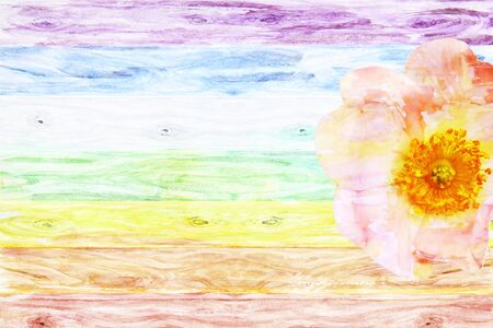 Rustic wooden background colored like a rainbow with wild rose flower with space for message or text, watercolor Stock Photo