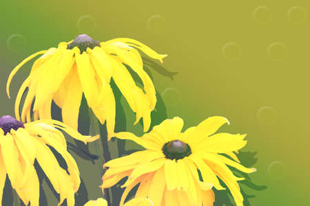 collage with yellow autumn flowers on a green  Banco de Imagens