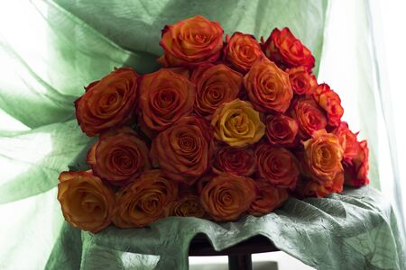 Large bouquet of beautiful roses on a background of green drapery Reklamní fotografie