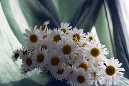 A bouquet of beautiful daisies lies on a table on a background of green drapery