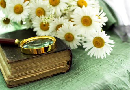 An old book, a magnifier and a bouquet of chamomiles lie on the table Reklamní fotografie