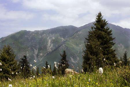 kz: Beautiful mountains landscape