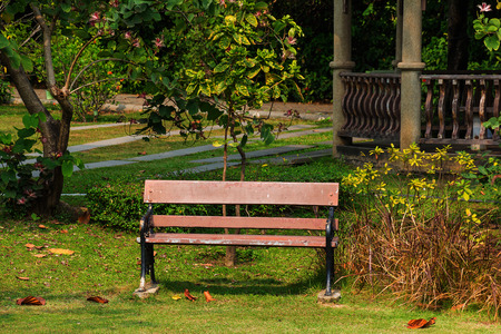 Bench in public park to relax. photo