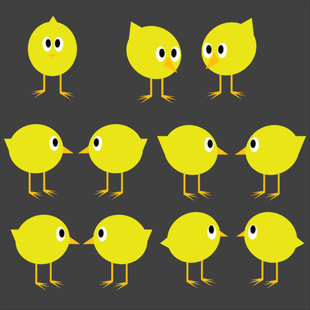 poult: Set of yellow chicks on a gray background.
