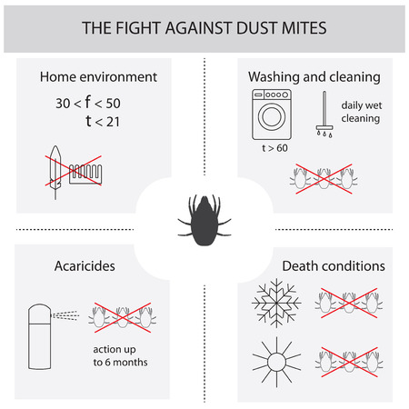 dealing: Infographics on the fight against dust mites. Dust mites. Methods of dealing with dust mites. Infographics vector illustration.