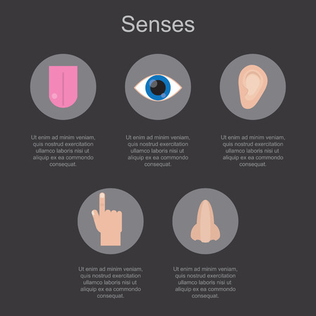 Five human senses on a dark background with space for your text. Vector illustration.