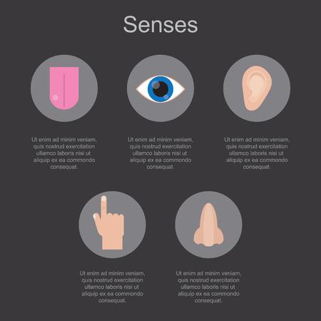 Cinque sensi umani su uno sfondo scuro con spazio per il testo. Illustrazione vettoriale.
