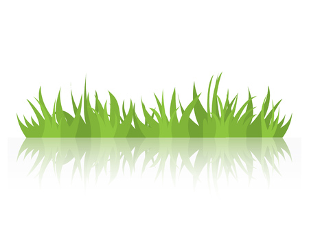 Tufts of grass with a mirror image. Natural element of design. Vector illustration.