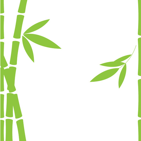 Leaves and trunks of bamboo Vector illustration.