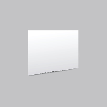 Torn sheet of paper with a shadow on a transparent background. Vector illustration.
