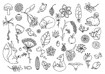 Vector illustration e, set the forest, animals and flowers. Doodle drawing. Meditative exercises. Coloring book anti stress for adults. Black and white.  イラスト・ベクター素材