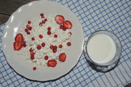cottage cheese: Milk and cottage Cheese