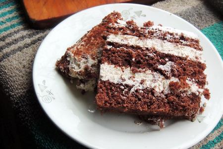 selfmade: Slice of self-made italian tiramisu dessert served on a plate