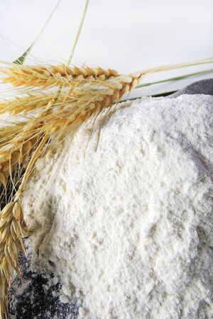 spikelets: Heap of wheat flour with spikelets isolated on white