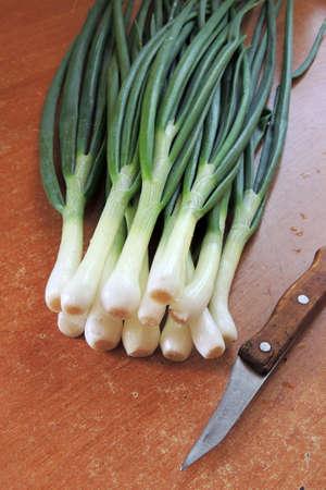 green onion: Bunch of fresh green onions in bundle on breadboard table. Dark or neutral wooden background