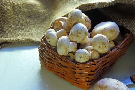 healthful: Fresh organic champignon mushrooms on chopping board with knife
