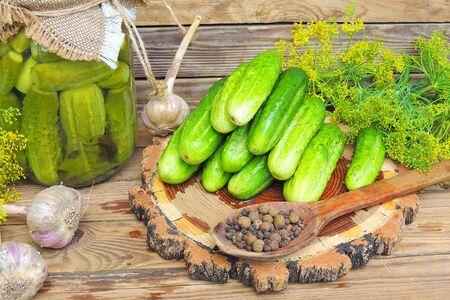 El proceso de cierre de pepinos salados, preparación para el período invernal. Ucrania