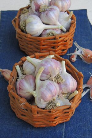young garlic in a basket on a wooden background, close-up Zdjęcie Seryjne