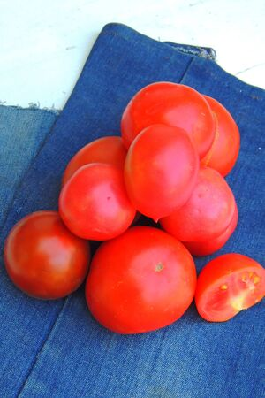 red and yellow tomatoes with a cool plan and peppercorns