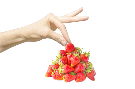 Female hand isolated on white background taking a berry by fingers and bright red fresh strawberry pile or heap. Copy-space.