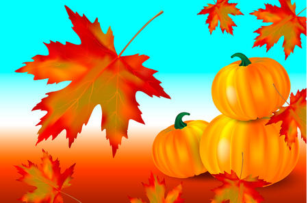 Bright orange pumpkins and falling red maple leaves on a blue autumn background. Seasonal banner or holiday card. Vector illustration. Иллюстрация
