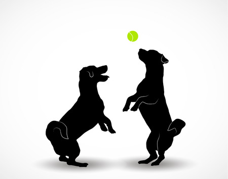 Silhouettes of two small cute dogs Jack Russell Terrier standing on hind legs, jumpimg playing with ball. Vector illustration isolated on white background. Zdjęcie Seryjne - 115235962