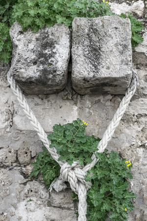White Mooring Rope knotted on stone wall with green plants