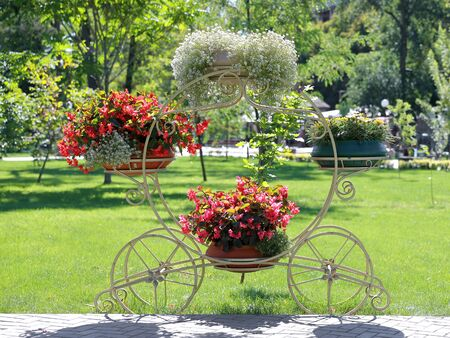 City park flower beds. Grden decoration. Stand on wheels for flowers. Summer flowering park. Фото со стока
