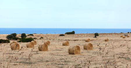 View of Northern Cyprus. The nature of the Mediterranean. A round bale of straw for animal feed. Forage for livestock. Agriculture of the island of Cyprus Reklamní fotografie