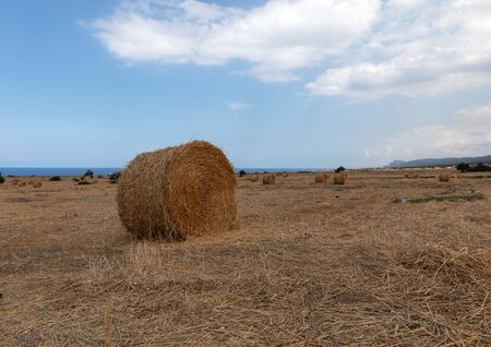 View of Northern Cyprus. The nature of the Mediterranean. A round bale of straw for animal feed. Forage for livestock. Agriculture. Reklamní fotografie
