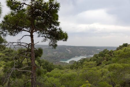Northern Cyprus landscape with pine tree. Beautiful mediterranean nature. Mountain summer landscape. View from the top of the mountain to the hills, sea and cloudy sky.