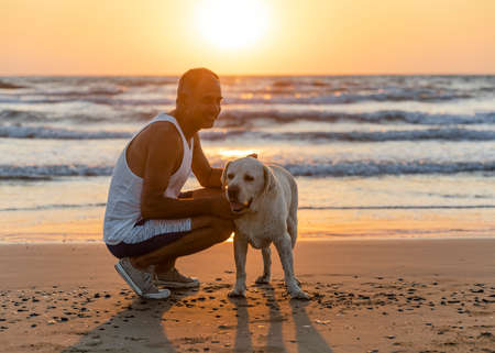 Cyprus - November 11, 2019: Person and big homeless dog together on the seashore. Friendship between dog and man